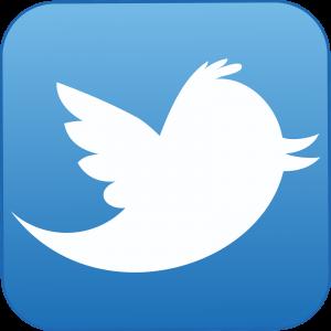 trading con il social network