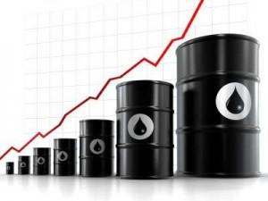Petroliogreggio2
